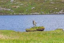 Fly Fishing in Scotland DM0187